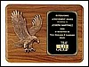 "Eagle Relief Casting Plaque (11""x15"")"