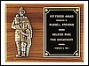 "Firematic Award Plaque (9""x12"")"
